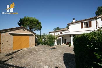Farmhouse with olive grove land for sale in le Marche